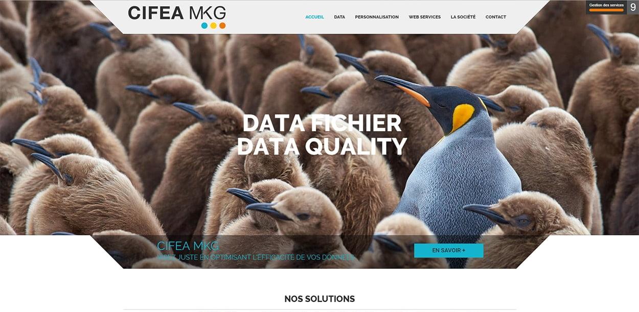 Création Site Internet Cifea-Mkg Rumilly